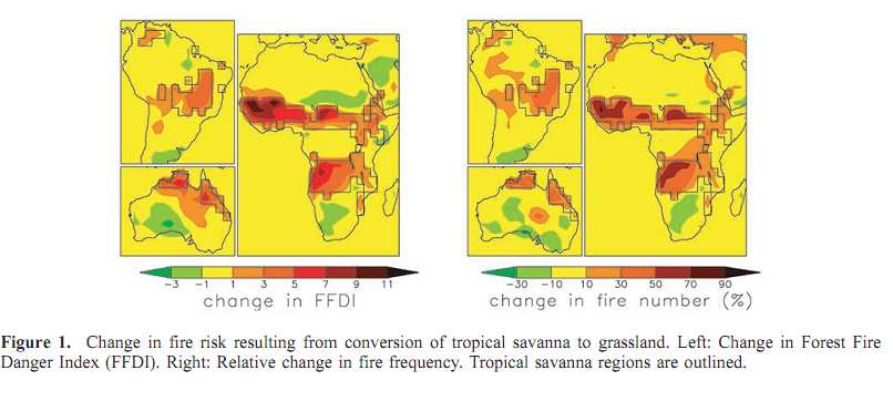 forest fire risk savanna