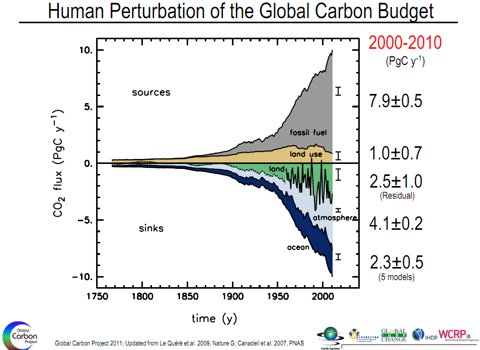 global carbon budget 2010